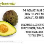 Avocados – some fun facts